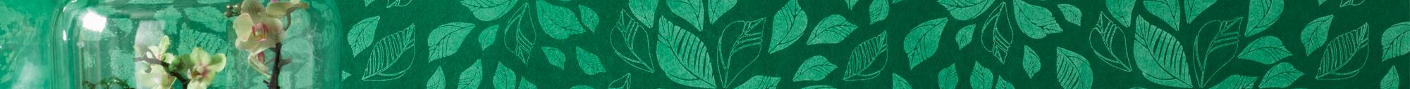Slider Portrait von Oskar Seus grüne Wand mit Blättermuster