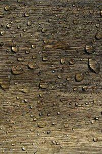 Lackierarbeiten von Oskar Seus Wassertropfen auf Holz
